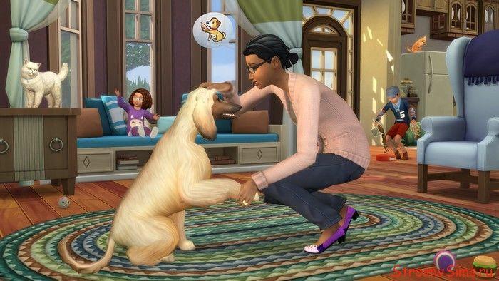 The Sims 4 Коты и Собаки: режим жизни