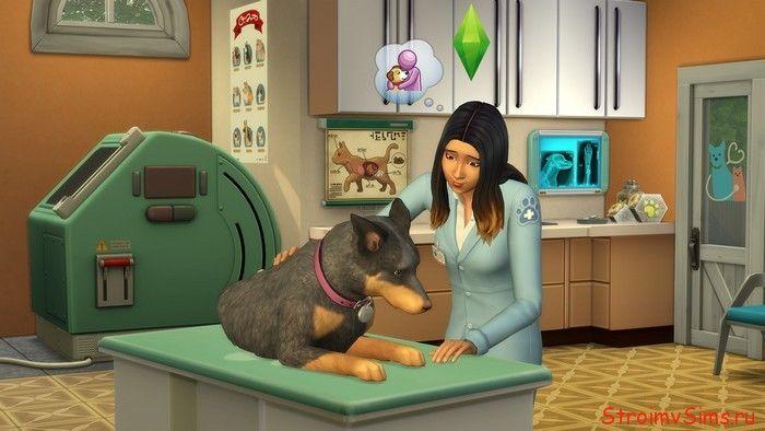 Ветеринар в Симс 4