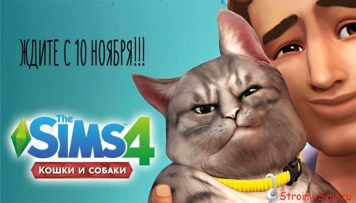 Кошка в Симс 4