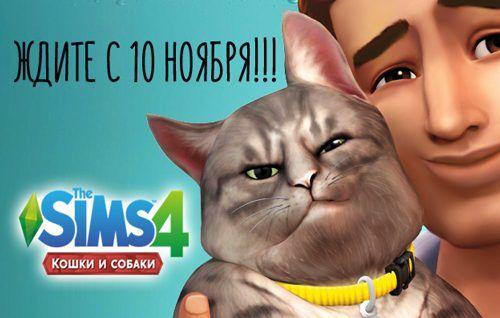 The Sims 4 Кошки и Собаки: последние новости!